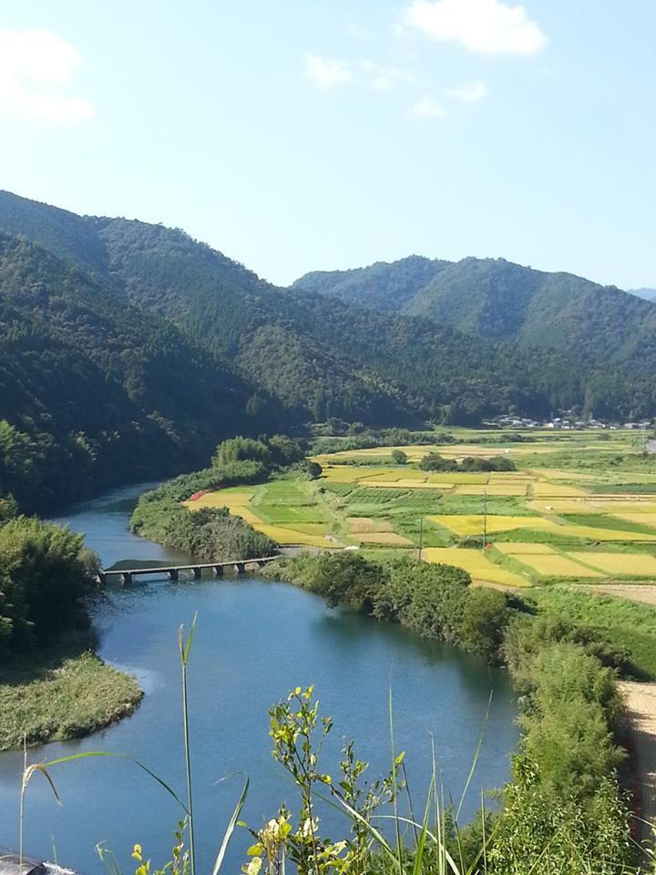 四万十川と田園