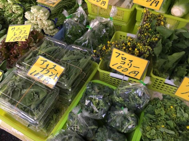 変わり野菜