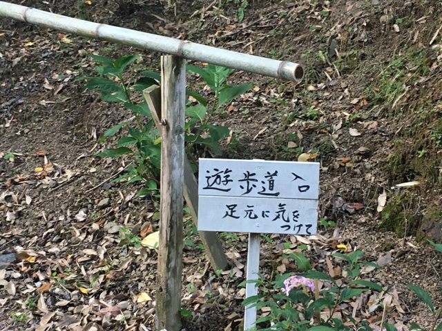 遊歩道の看板