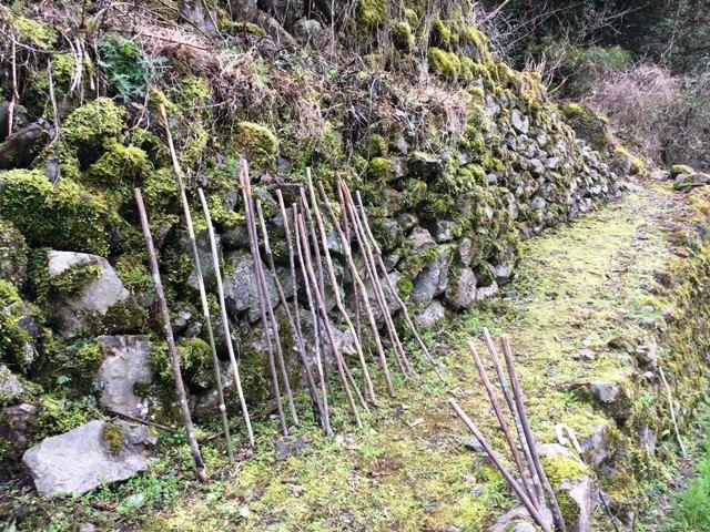 田舎の石垣